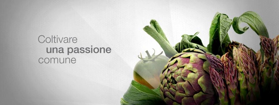 composition nuova1